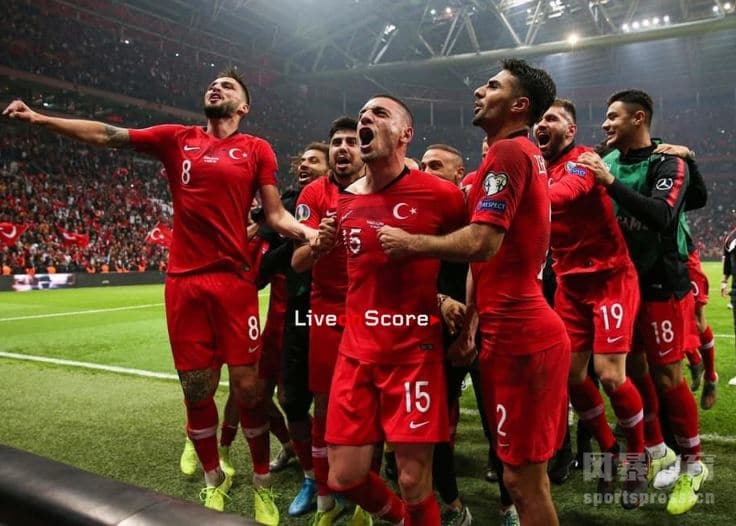 土耳其队-土耳其国家队