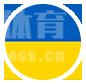 乌克兰队-乌克兰国家队-2020欧洲杯C组足球队
