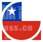 智利队-智利国家队-2021美洲杯A组足球队