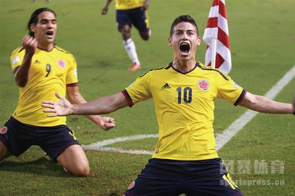 哥伦比亚队-哥伦比亚国家队-2020美洲杯B组足球队