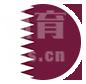 卡塔尔队-卡塔尔国家队-2021美洲杯B组足球队