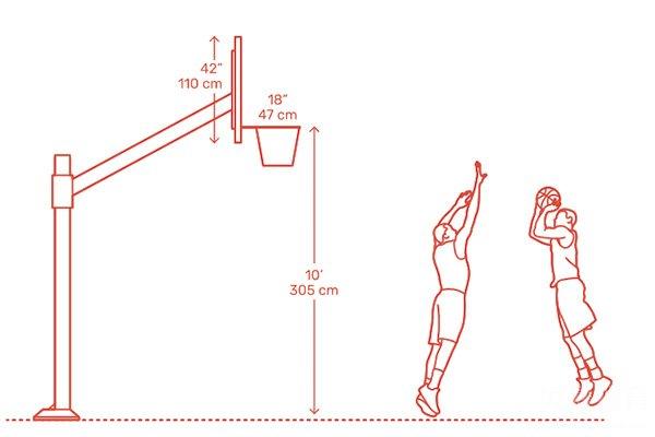 篮板上沿高度达到3.95米