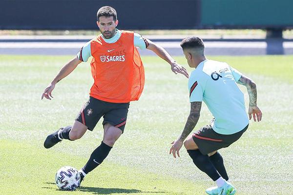 期待葡萄牙本届欧洲杯的精彩表现